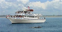 Cape May Point & Dolphin Watch Cruise